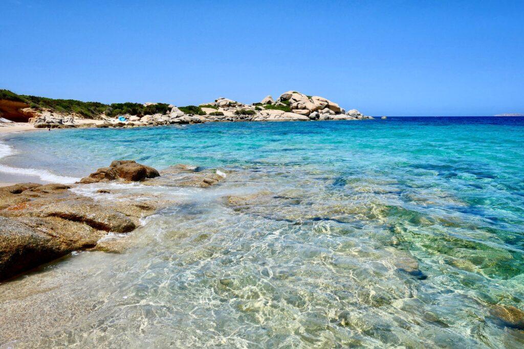 Sardegna Sired